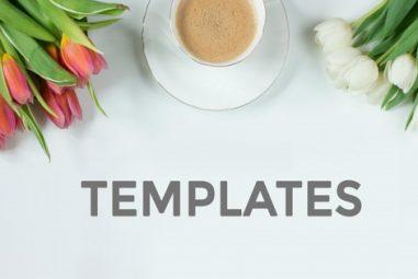 Webself: que peut-on dire des templatesproposés ?